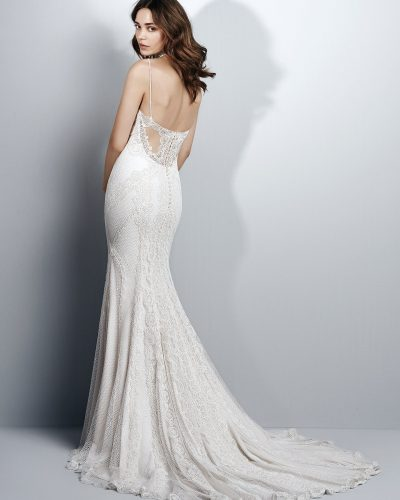Sottero-and-Midgley-Wedding-Dress-Narissa-7SW968-Back